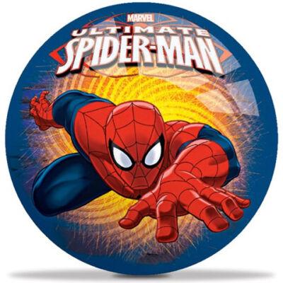 Pókemberes gumilabda 23 cm